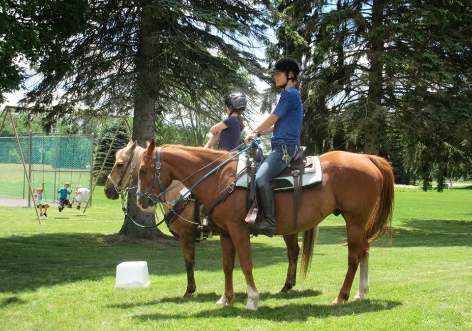 Equine Program in the News